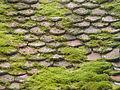 Annecy, tejado con musgo, Francia, 2015 12.JPG