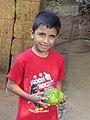 Annona muricata fruit at Peravoor (2).jpg