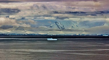 Antarctica Cuverville Island area - panoramio (15).jpg