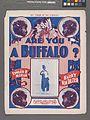 Are you a buffalo? (NYPL Hades-1924340-1952890).jpg