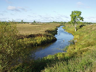 Arkhangelsk Oblast - Landscape of Plesetsky District in Arkhangelsk Oblast