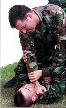 The chokehold(training demonstration)