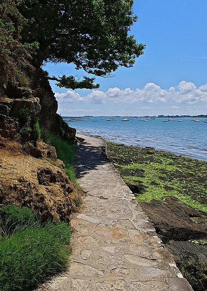 Coastal path, Arradon, Morbihan, France.