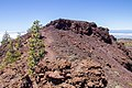 At Teide National Park 2019 086.jpg
