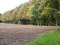 Autumn Colour, Tarrant Gunville - geograph.org.uk - 1027417.jpg