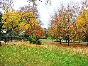 English: Autumn colour at The Leadership Trust...