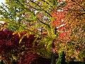 Autumn in Bollschweil, Baden.jpg