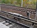 Bahnhof Pankow 2012 (Alter Fritz) 13.JPG