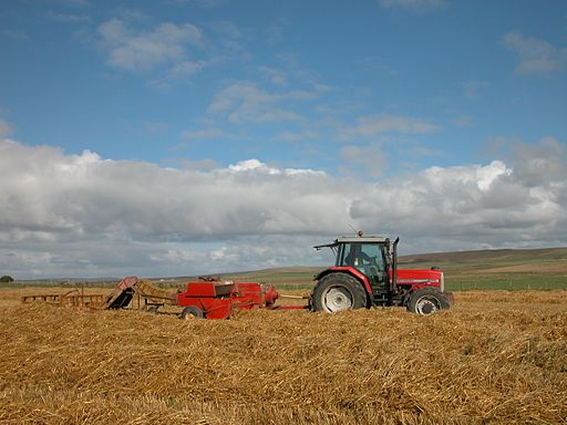 Baling straw, Orkney Islands 3