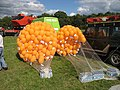 Balloon race, Tenbury Show - geograph.org.uk - 909840.jpg