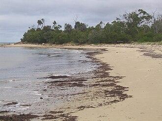 Balnarring, Victoria - Balnarring Beach