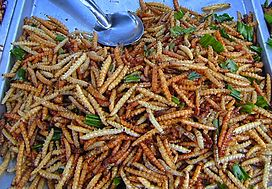 Bamboo worms on plate cropped jpeg.jpg