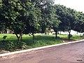 Bauru - SP - panoramio (41).jpg