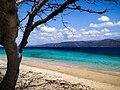 Beach to sea gradation west bali national park.jpg