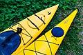 Bear Head Lake State Park Kayaks Minnesota (36111894942).jpg