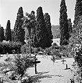 Begraafplaats van arme mensen in een Catalaans dorpje, Bestanddeelnr 254-0889.jpg