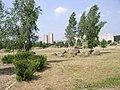 Belarus-Minsk-Museum of Boulders-22.jpg