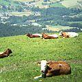 Berchtesgaden IMG 4981.jpg