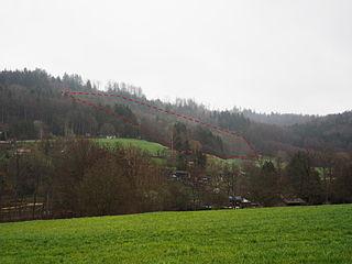 Bergrutschung Tannenwald