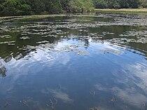 Berijam Lake.jpg