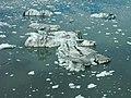 Bering Glacier icebergs - panoramio.jpg