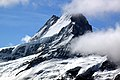 Berner Oberland Finsteraarhorn.jpg