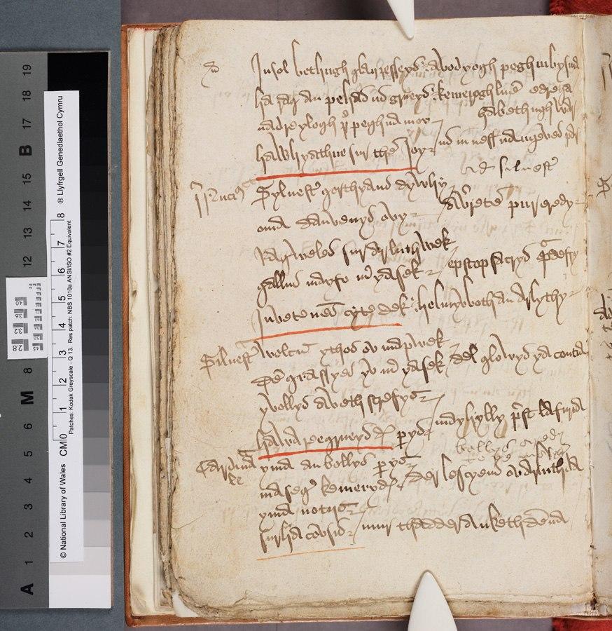 Beunans Meriasek (The life of St Meriasek) (f.56v.) Middle Cornish Saint's Play