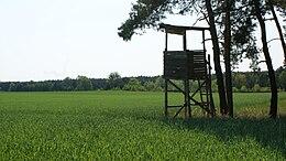 Portal Jagd Einrichtungen Wikiwand