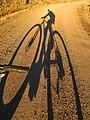 Bicycle Shadow near Valley Falls, Oregon (13992699548).jpg