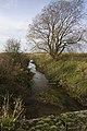 Bielby Beck - geograph.org.uk - 1569529.jpg