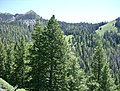 Blaine County, ID, USA - panoramio - photophat (1).jpg