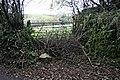 Blocked Field Gate - geograph.org.uk - 290110.jpg