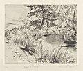Bord d'étang, print by Armand Apol (1879-1950), Belgium, (1914), Prints Department of the Royal Library of Belgium, S.IV 109470.jpg
