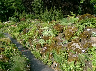 Giessen - Image: Botanical garden Giessen Germany 01