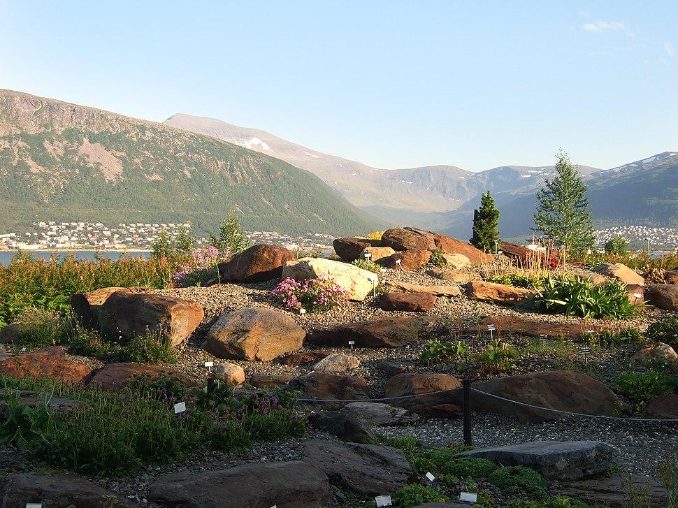 Botanicgardentromso