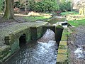 Bournemouth Gardens, intriguing weir - geograph.org.uk - 669486.jpg