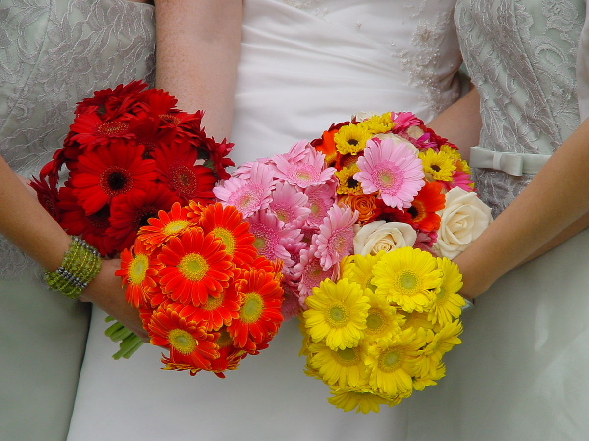 Bouquet Sposa Wikipedia.File Bridal And Bridesmaids Bouquets Jpg Wikimedia Commons