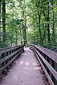 Bridge in Mammoth Cave National Park - Flickr - mamamusings.jpg