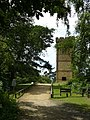 Bridleway to Leith Hill Tower - geograph.org.uk - 1403077.jpg