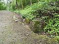 Brno, Wilsonův les (18).JPG