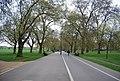 Broad Walk, Hyde Park - geograph.org.uk - 2580307.jpg