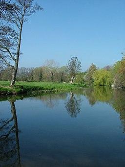 Brockley meadow along the River Teme, Leintwardine. - geograph.org.uk - 1260425