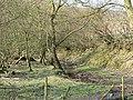 Brook, Gwaithla - geograph.org.uk - 388646.jpg