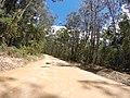 Brooman NSW 2538, Australia - panoramio (113).jpg