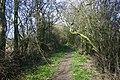 Bull Lane - geograph.org.uk - 356309.jpg