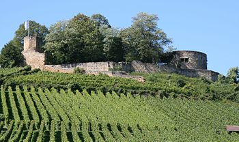 Castle ruin Weibertreu from the east