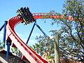 Busch Gardens Tampa 085.jpg