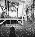 CH-NB - USA, Pine Mountain Valley-GA- Landschaft - Annemarie Schwarzenbach - SLA-Schwarzenbach-A-5-11-119.jpg