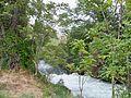 Canal Saint-Julien près de Cheval Blanc.JPG
