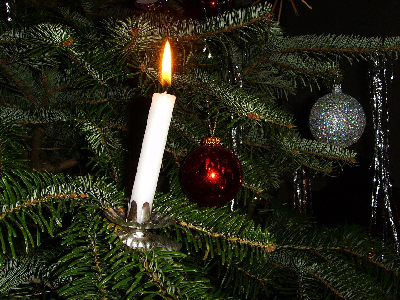 filecandle on christmas treejpg wikimedia commons